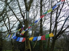 Tibetan Buddhist Prayer Flags Buddhist Centre North Wales
